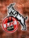Fünf Stürmer für zwei Positionen: Philipp Hosiner und die Konkurrenz beim 1. FC Köln