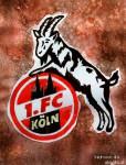 1.FC Köln Wappen_abseits.at