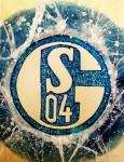 """Stadion der Woche: Veltins-Arena """"Auf Schalke"""""""