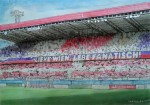 """""""Sich selbst um den Sieg gebracht"""" - die Meinungen der Austria-Fans zum 2:2 im Derby"""
