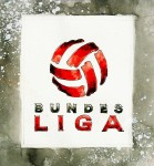 Die Bilanz zur Bundesligasaison 2013/2014
