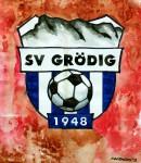 SV Grödig Wappen, Logo