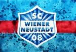 """SC Wiener Neustadt Manager Günter Kreissl im Interview: """"Mir wird nicht fad…"""""""