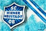 SC Wiener Neustadt - Wappen mit Farben