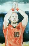 Wesley Sneijder - Niederlande