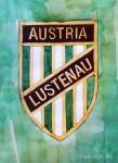 Meisterzug abgefahren: Austria Lustenau unterliegt dem SV Horn mit 0:1
