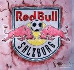 Ein bunter Haufen aus Belgien, Frankreich und Luxemburg – das ist Salzburgs heutiger Gegner F91 Dudelange!