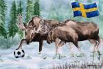 Fußball in Schweden