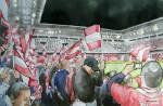 ÖFB Fans